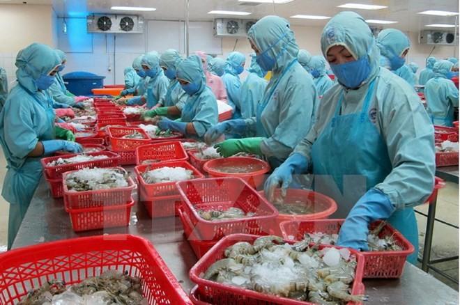 สัตว์น้ำเวียดนามพยายามสร้างความไว้วางใจในตลาดยุโรป - ảnh 1