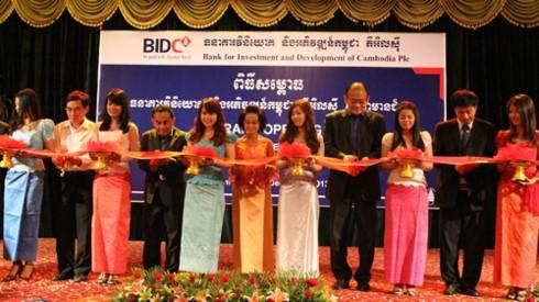 50 ปีอาเซียน-โอกาสผลักดันการค้าของเวียดนาม  - ảnh 4