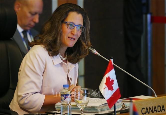 รัฐมนตรีต่างประเทศแคนาดายืนยันถึงความปรารถนาผลักดันความสัมพันธ์กับอาเซียน - ảnh 1