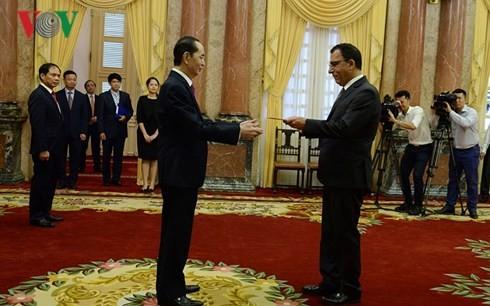 ประธานประเทศ เจิ่นด่ายกวาง ให้การต้อนรับบรรดาเอกอัคราชทูตที่เข้ายื่นสาส์นตราตั้ง - ảnh 1