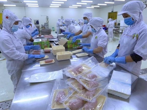 เศรษฐกิจเวียดนามมีศักยภาพขยายตัวที่เข้มแข็ง - ảnh 1