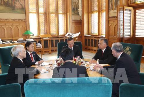 """เวียดนามและฮังการียกระดับความสัมพันธ์ระหว่างสองประเทศให้พัฒนาขึ้นเป็นความสัมพันธ์ """"หุ้นส่วนในทุกด้าน"""" - ảnh 1"""