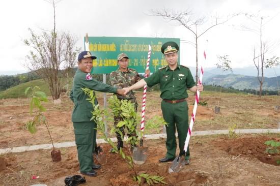 โครงการปลูกต้นไม้มิตรภาพ ณ หลักพรมแดนในสามแยกชายแดนเวียดนาม ลาว กัมพูชา - ảnh 1