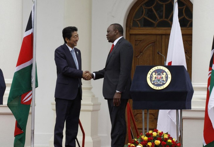 Japan defines priorities for cooperation with Africa - ảnh 1