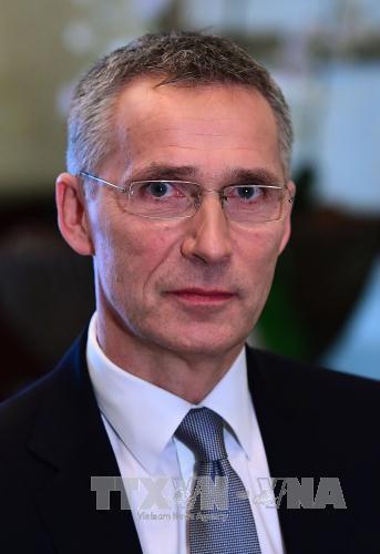 NATO to enhance collective defense capability - ảnh 1