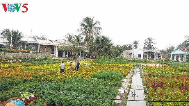 New-style rural area development program improves life in Ben Tre  - ảnh 2