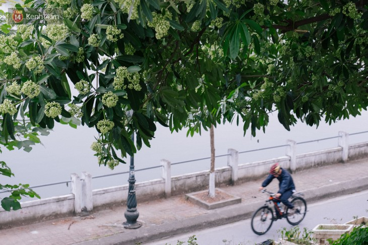 Weekend cycling, new hobby of Hanoians - ảnh 3