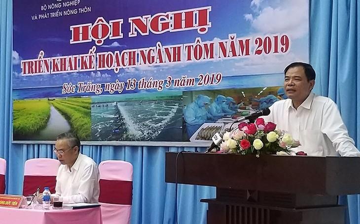 Vietnam targets 4.2 billion USD of shrimp exports in 2019 - ảnh 1