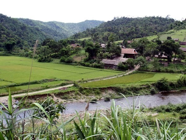 Workshop discusses protected area governance in Vietnam - ảnh 1