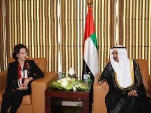 Vereinigte Arabische Emirate wollen mehr Arbeiter aus Vietnam aufnehmen - ảnh 1