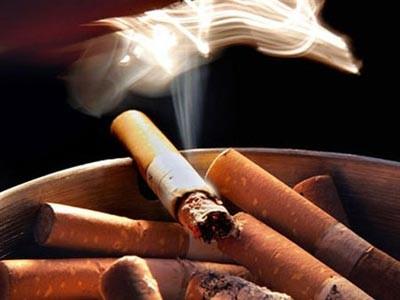 Treffen zum Welttag ohne Tabak in Vietnam - ảnh 1