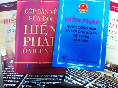 Entfaltung der Demokratie in der verbesserten Verfassung von 1992 - ảnh 1
