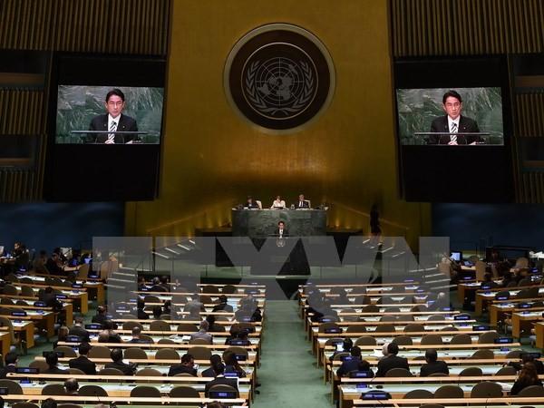 Vietnam verpflichtet sich zur strikten Einhaltung des Atomwaffensperrvertrags - ảnh 1