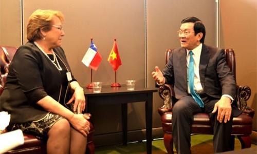 Staatspräsident Truong Tan Sang trifft Präsidenten Österreichs und Chiles - ảnh 1