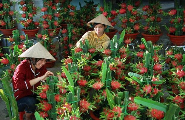 Weltbank hebt die Prognose über das Wirtschaftswachstum Vietnams - ảnh 1