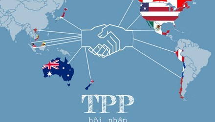 TPP- ein Handelsvorbild im 21. Jahrhundert - ảnh 1