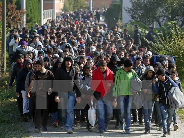Balkanstaaten zweifeln an Lösung der Flüchtlingskrise der EU - ảnh 1