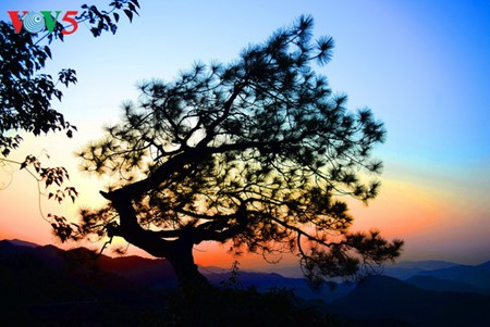 Yen Tu – Morgendämmerung an einem bedeutenden Ort des Buddhismus - ảnh 18