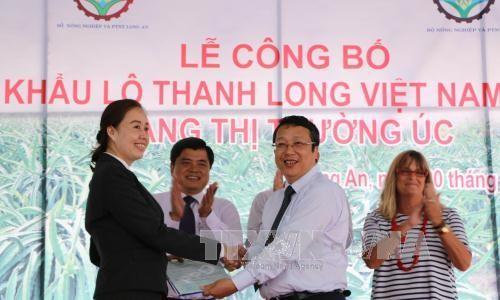 Vietnam exportiert zum ersten Mal frische Drachenfrüchte nach Australien - ảnh 1