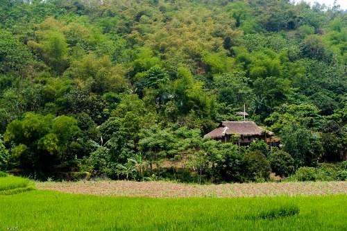 Giang Mo – Ein attraktives Ziel für Touristen - ảnh 1