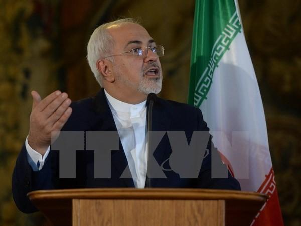 Irans Außenminister: Die Sicherheit und der Frieden des Landes hängen von den Bürgern ab - ảnh 1
