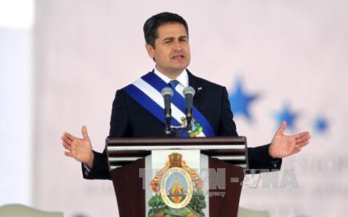 Präsident von Honduras will Beziehungen zu Vietnam vertiefen - ảnh 1
