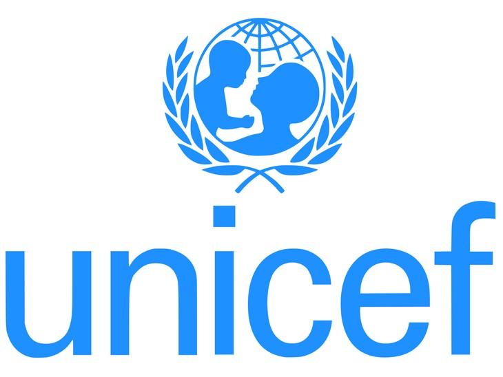UNICEF warnt vor dem Analphabetismus der jungen Menschen in Krisenregionen. - ảnh 1