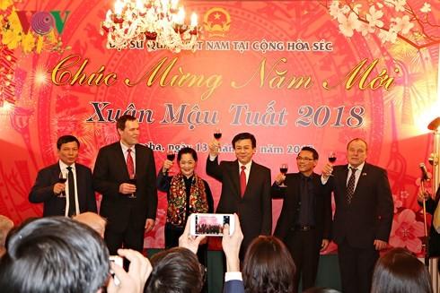 Aktivitäten der Auslandsvietnamesen in der Welt zum Neujahr - ảnh 1