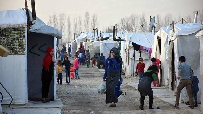 UNO setzt humanitäre Hilfe in Syrien fort - ảnh 1