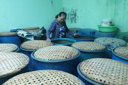 Bewahrung und Entwicklung des Dorfes für Fischsoße Nam O - ảnh 1