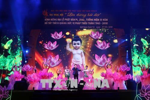 Zahlreiche Aktivitäten zum 2562. Geburtstag Buddhas in Ho Chi Minh Stadt  - ảnh 1