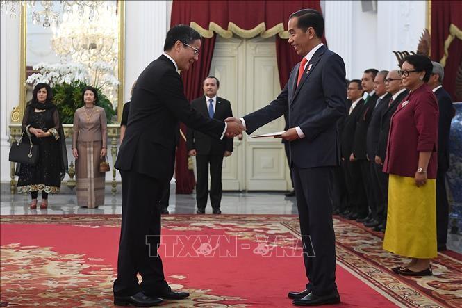 Indonesien verstärkt Zusammenarbeit mit Vietnam bei der L regionalen und internationalen Fragen - ảnh 1