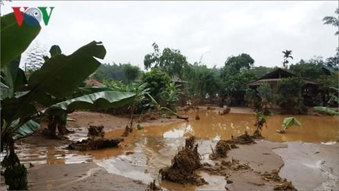 Provinzen beseitigen Folgen der Überschwemmungen - ảnh 1