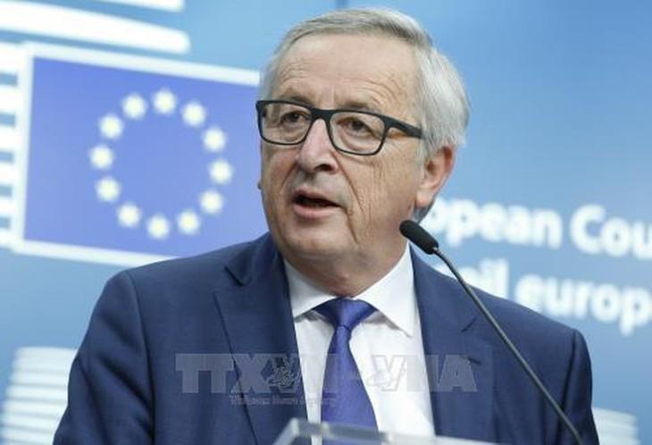 Vorsitzender der Europäischen Kommission betont die Verstärkung der Außenpolitik der EU - ảnh 1