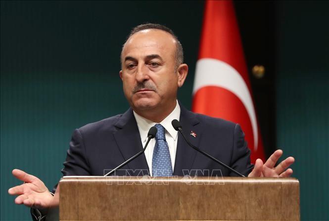 Die Türkei bemüht sich um einen Waffenstillstand in der syrischen Provinz Idlib - ảnh 1