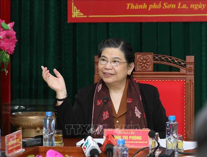 Ständige Vizeparlamentspräsidentin Tong Thi Phong besucht die Stadt Son La - ảnh 1