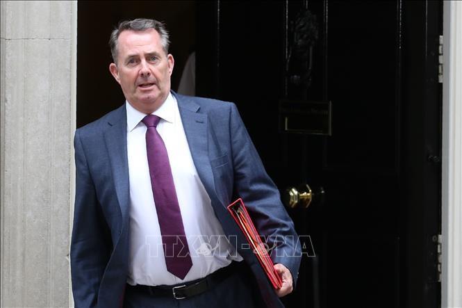 Großbritannien begrüßt das baldige Inkrafttreten von CPTPP - ảnh 1
