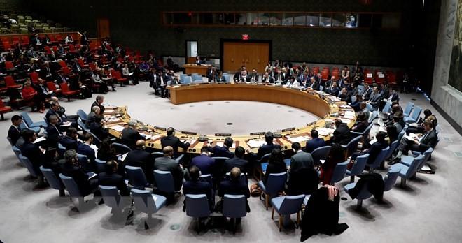 Deutschland appelliert an die Reform des UN-Sicherheitsrats - ảnh 1