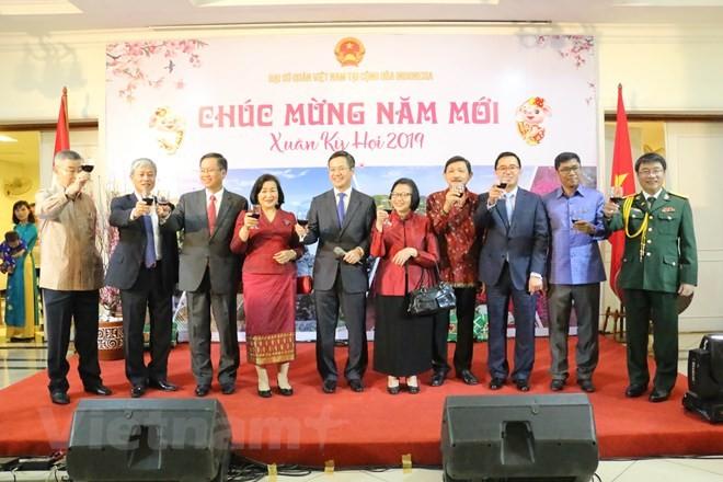 Vietnamesische Gemeinschaft im Ausland begrüßen das Neujahrsfest des Schweins 2019 - ảnh 1
