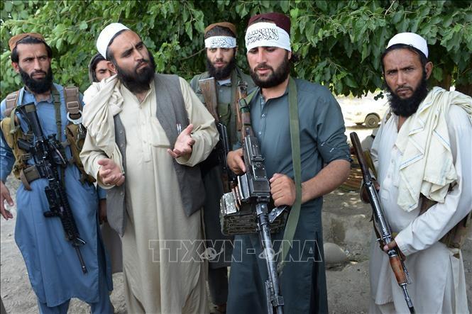 USA und Taliban vereinbaren den Termin für die nächste Verhandlungsrunde - ảnh 1