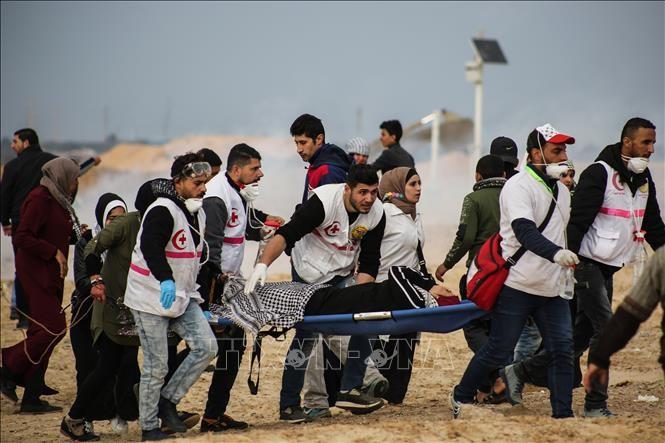 UN-Sonderbeauftragter: Die Gewalt im Gaza kann eine Katastrophe sein  - ảnh 1
