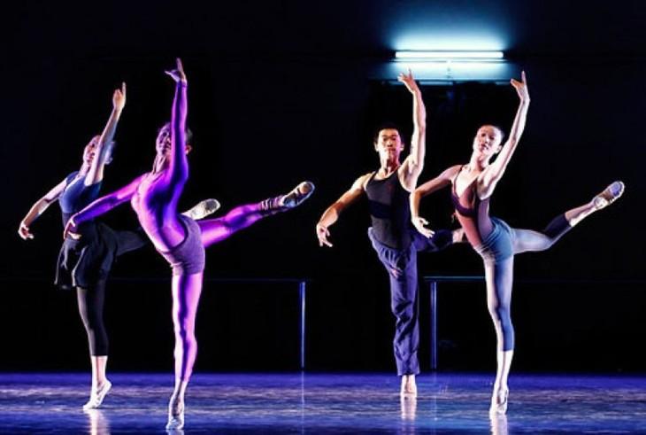 Nationaler Wettbewerb für junge Choreografietalente - ảnh 1