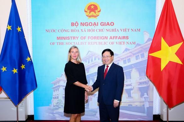 Zusammenarbeit zwischen Vietnam und EU weiter vorantreiben - ảnh 1