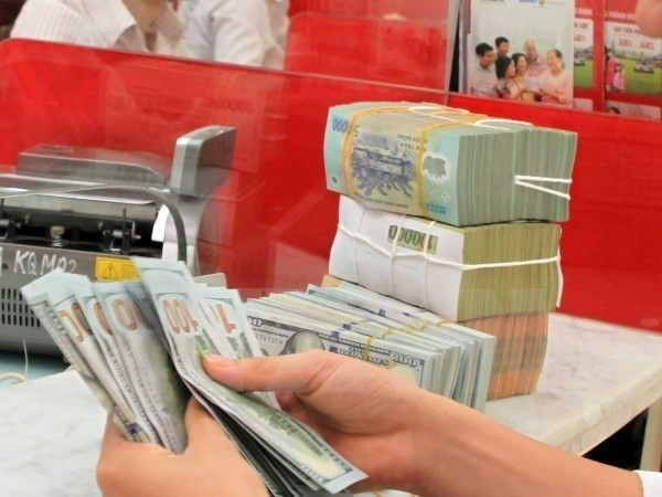 Vietnam's foreign reserves reach record high  - ảnh 1