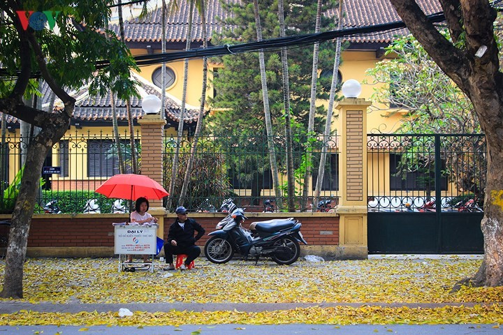 CNN commercials boost Hanoi's foreign tourist arrivals - ảnh 1