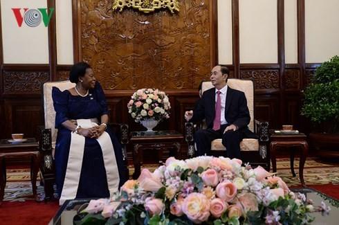 President receives new ambassadors - ảnh 5