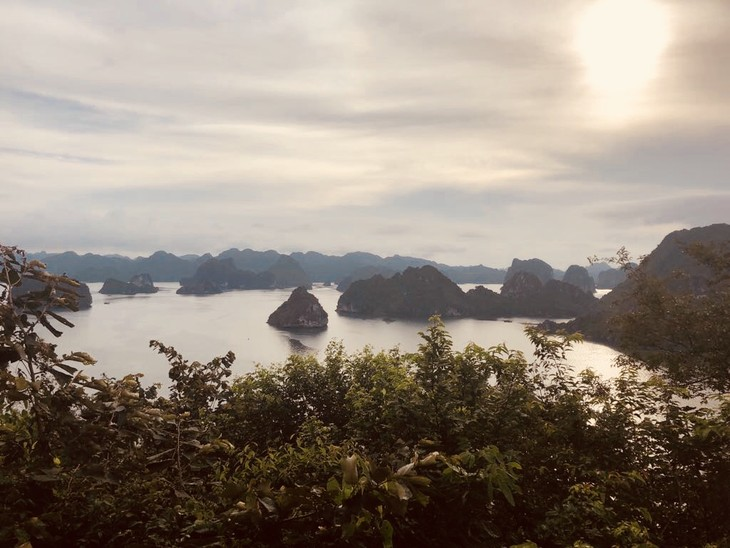Ha Long Bay - ảnh 3