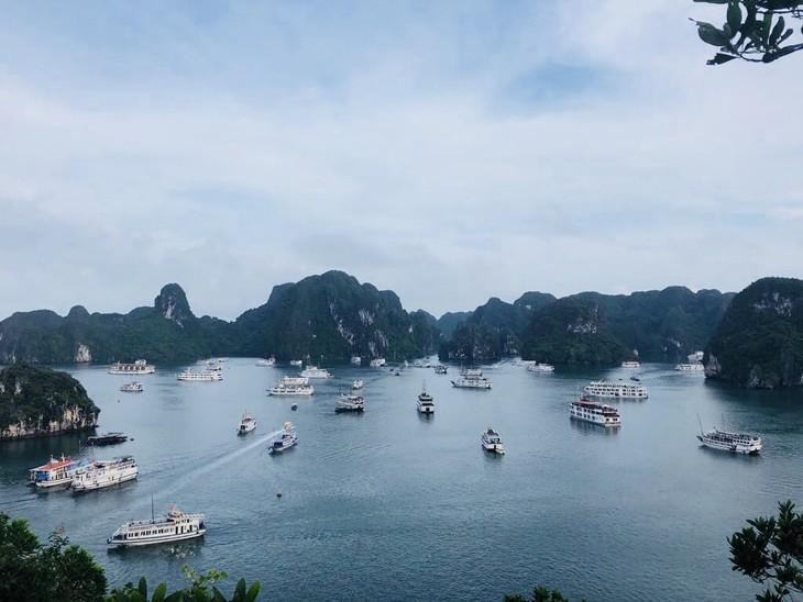 Ha Long Bay - ảnh 1