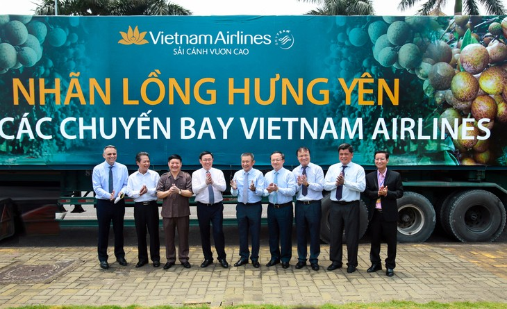 Vietnam Airlines to serve fresh longan   - ảnh 1