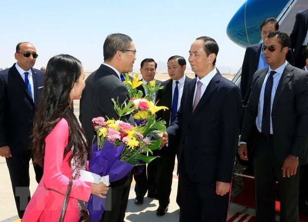 President Tran Dai Quang begins Egypt visit - ảnh 1